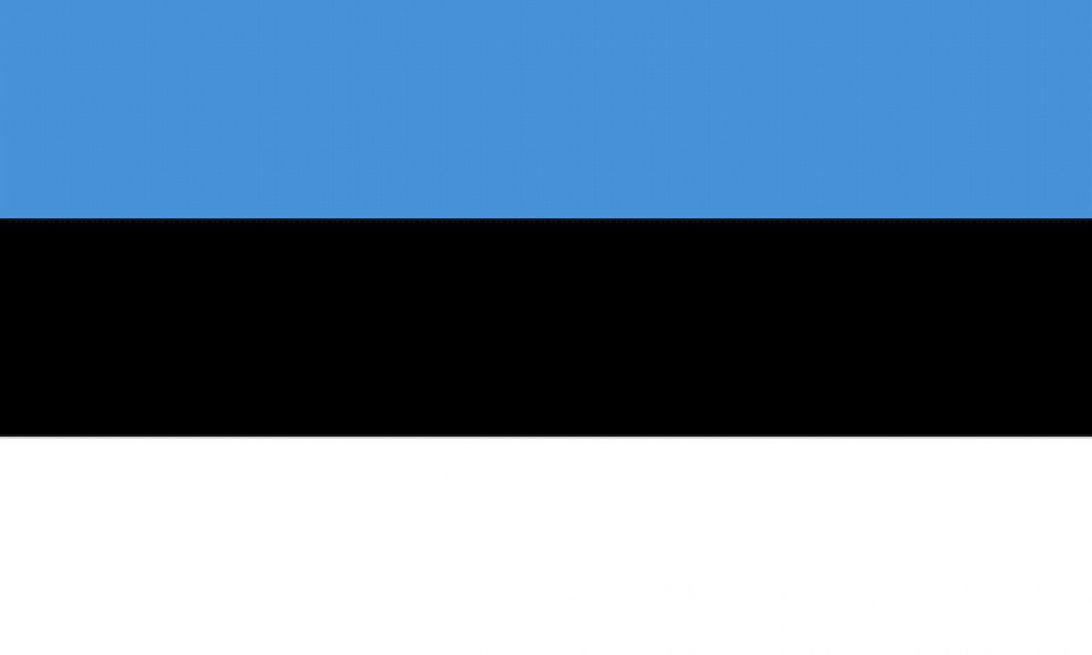 Estonian Peer-to-Peer lending platforms and market