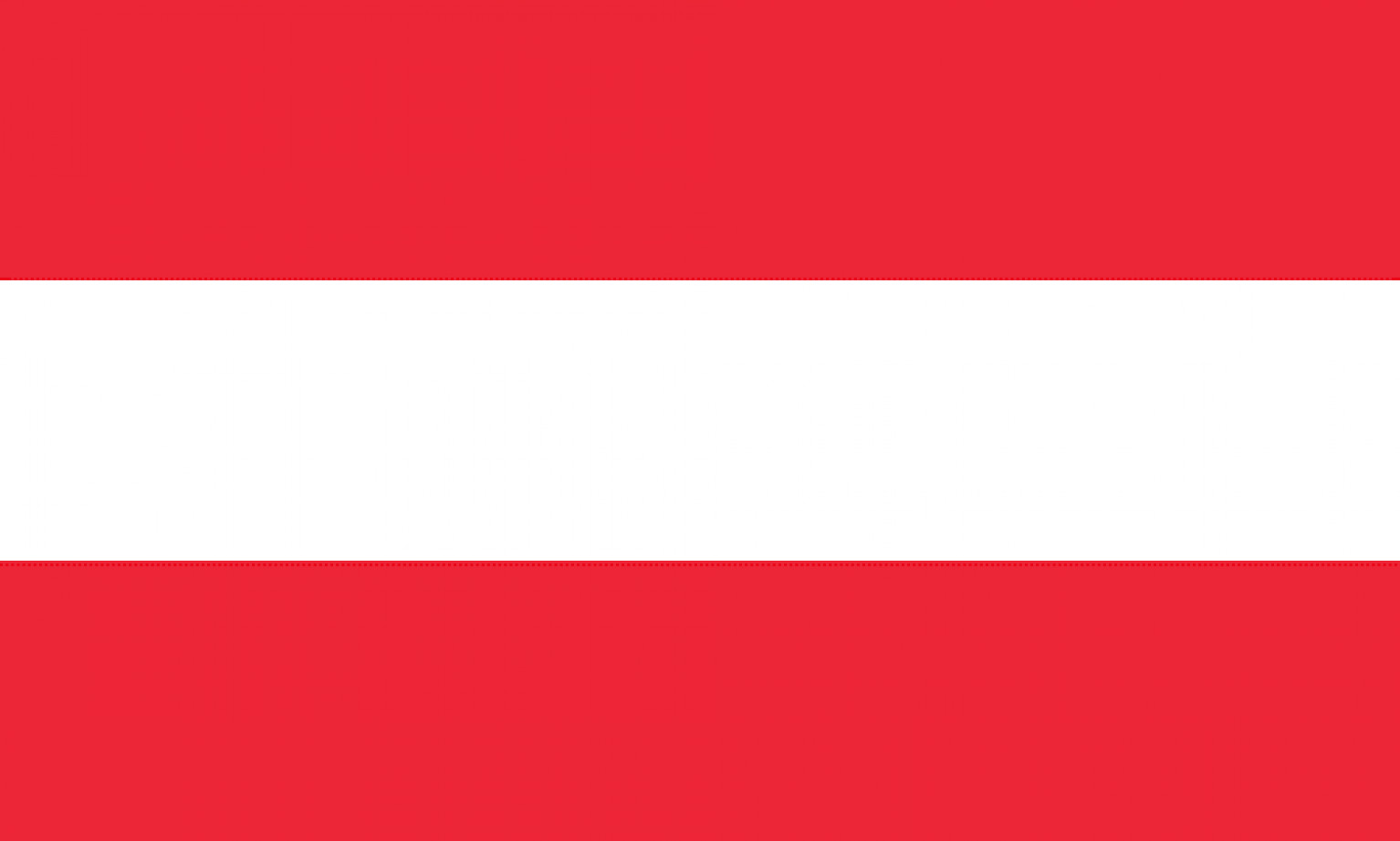 Austrian Peer-to-Peer lending platforms and market