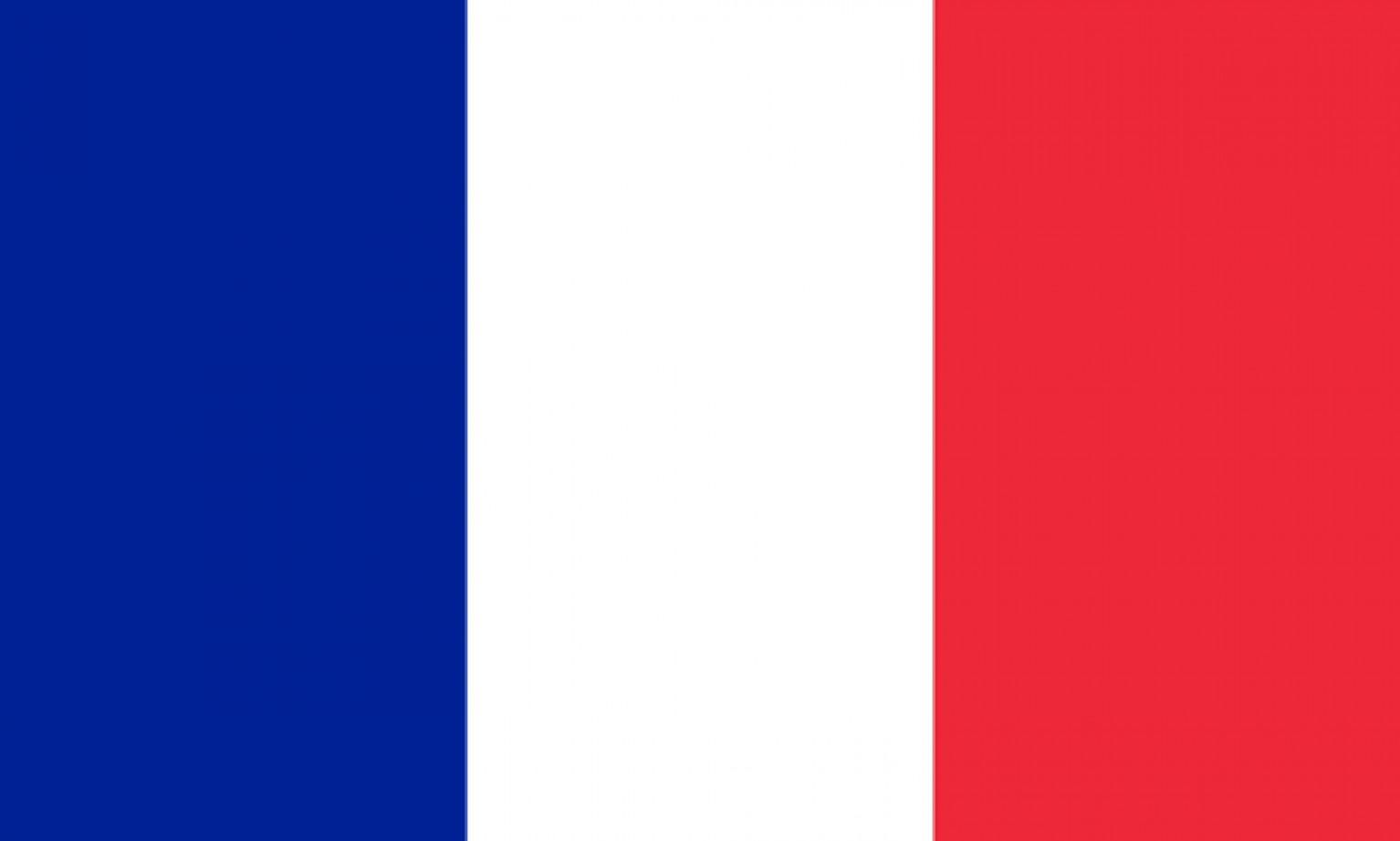 French Peer-to-Peer lending platforms