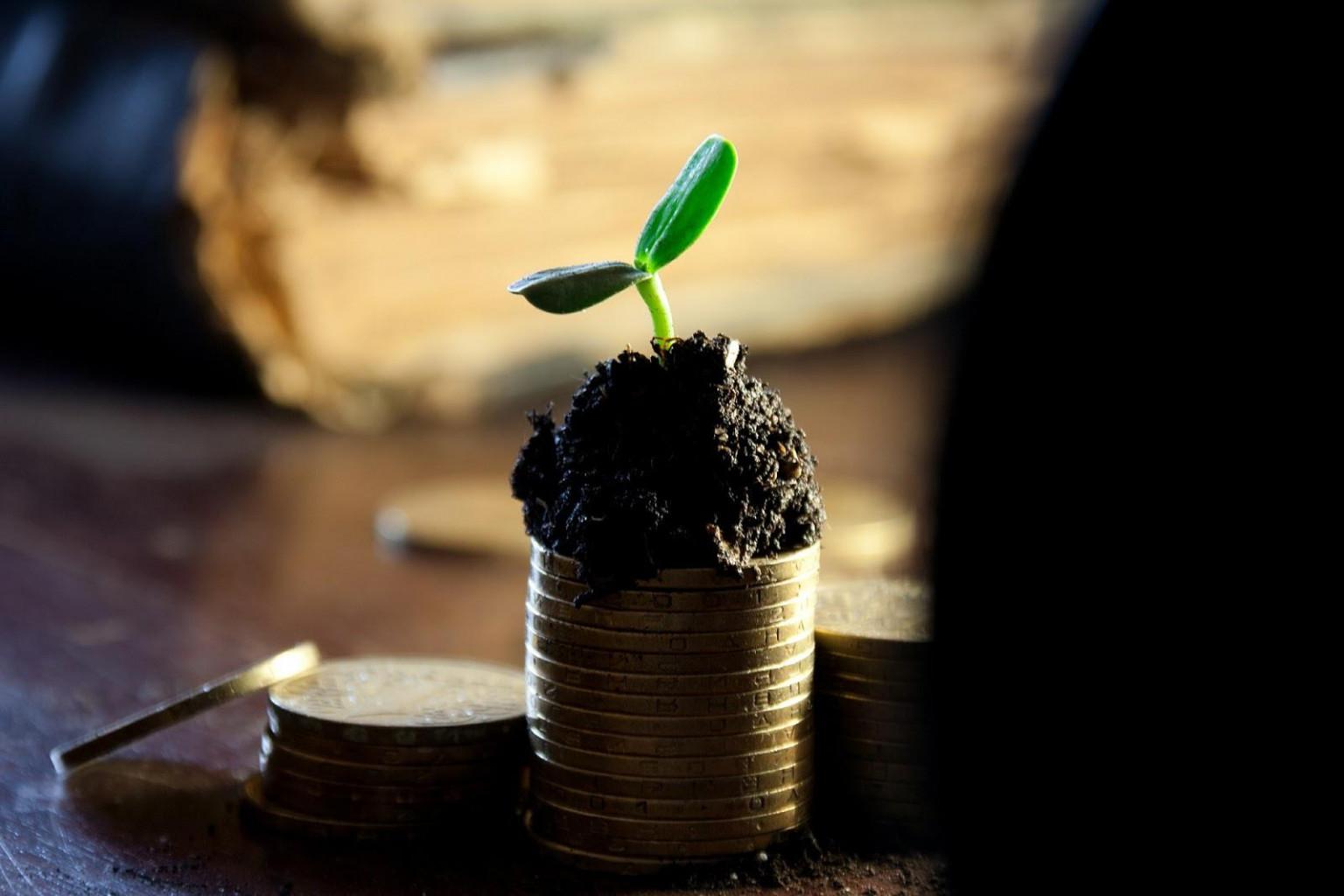 The best passive income ideas